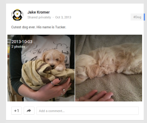 2013-10-06 20_12_03-Jake Kromer - Google+